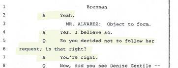 Thomas Brennan Deposition Kyle's medication, lying, blog info, 001